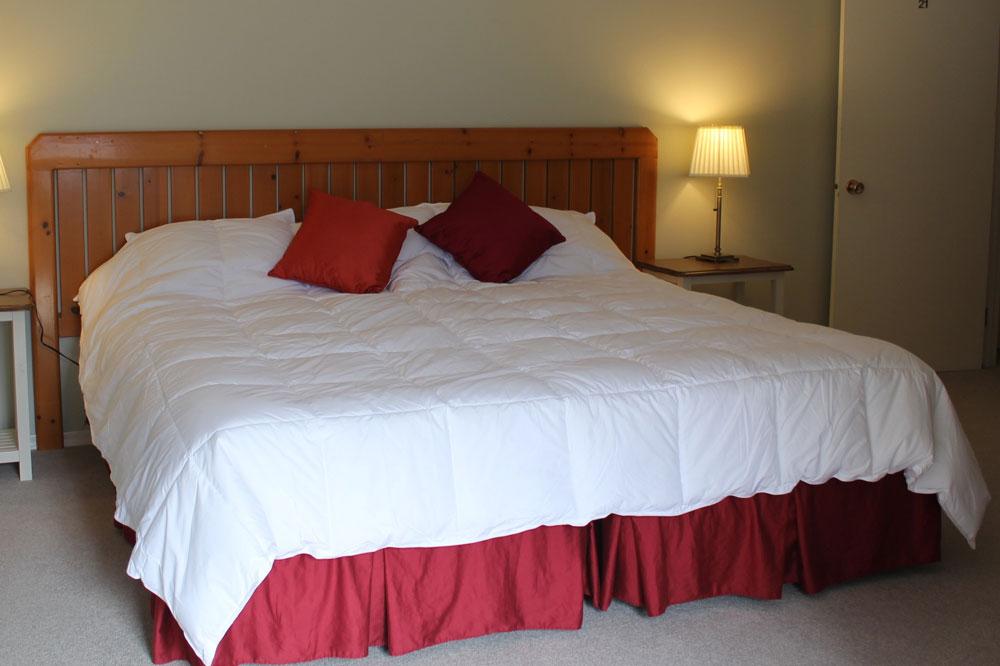 Tara-Shanti-Aqua-room-red-1